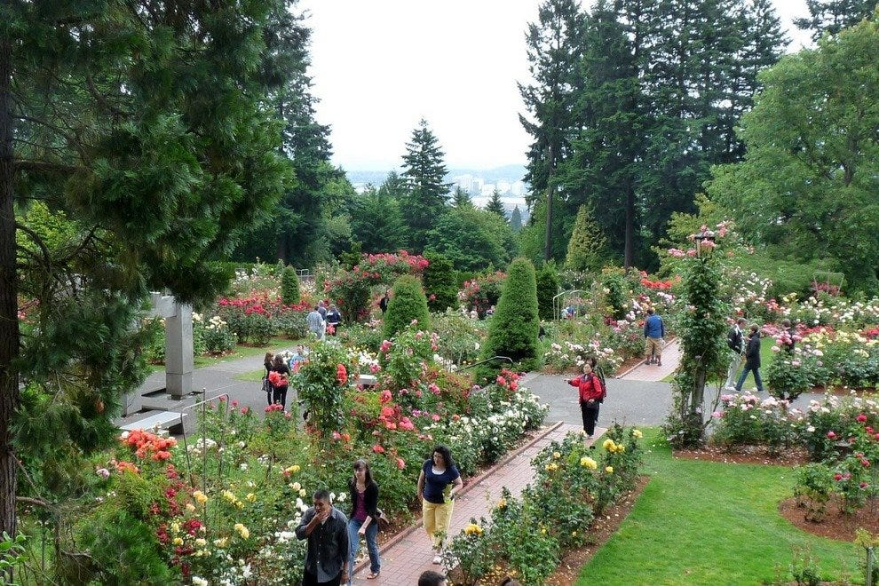 Spring Rose Show Portland Attractions Review 10best