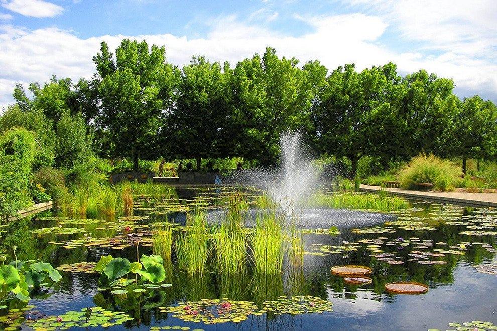 Denver Botanic Gardensu0027 Annual Holiday Sale