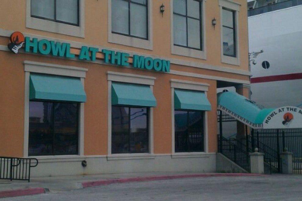 对着月亮嚎叫