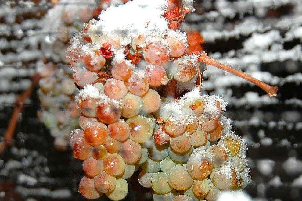Frozen grapes yield a delicious drink