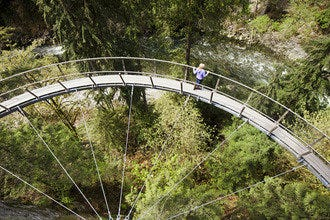 Take a Walk Over the Edge at Capilano Suspension Bridge's Cliffwalk
