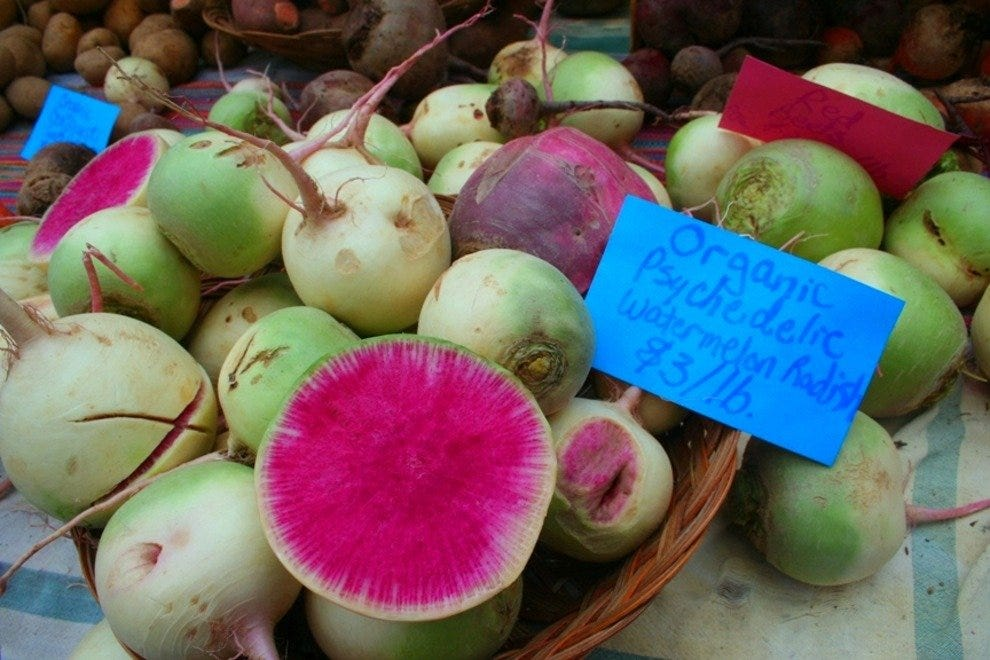 Watermelon Radish, a Winter Treat