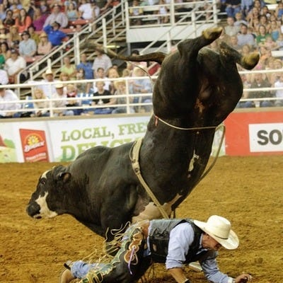 Mesquite Championship Rodeo Dallas Attractions Review