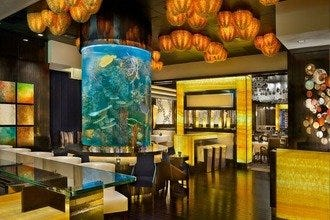 Atlantis Casino: Reno's Newest Hot Spot