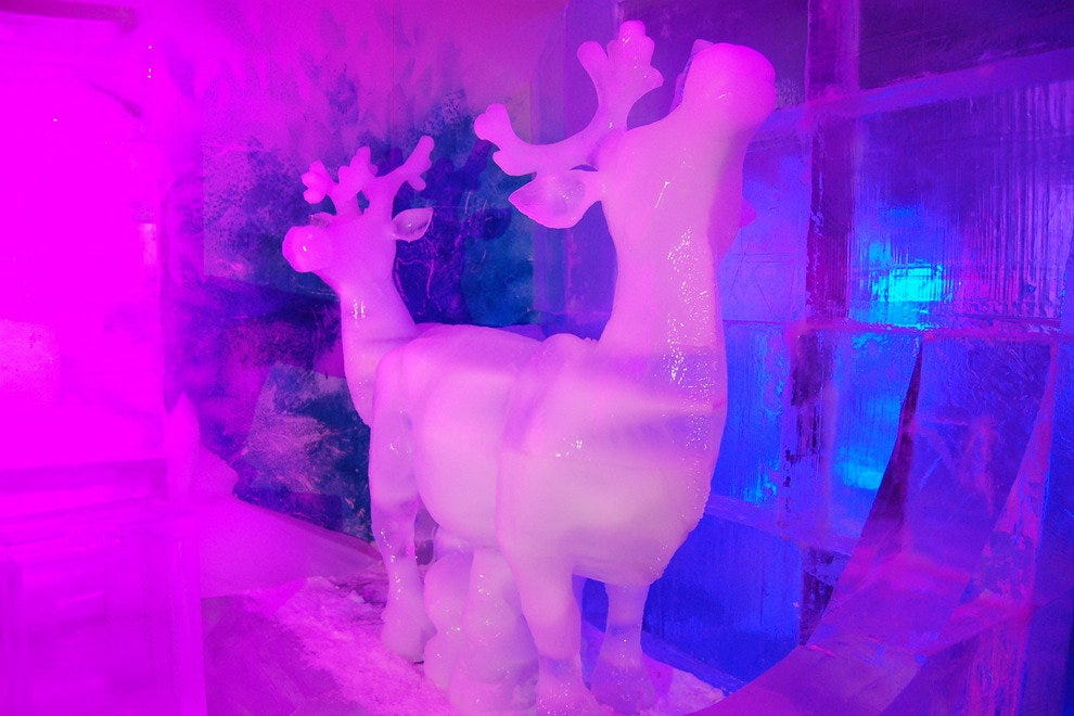 Reindeer sculpted in ice at the Magic Ice Gallery, St. Thomas