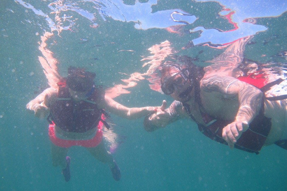 Snorkeling in the mangrove lagoon, St. Thomas