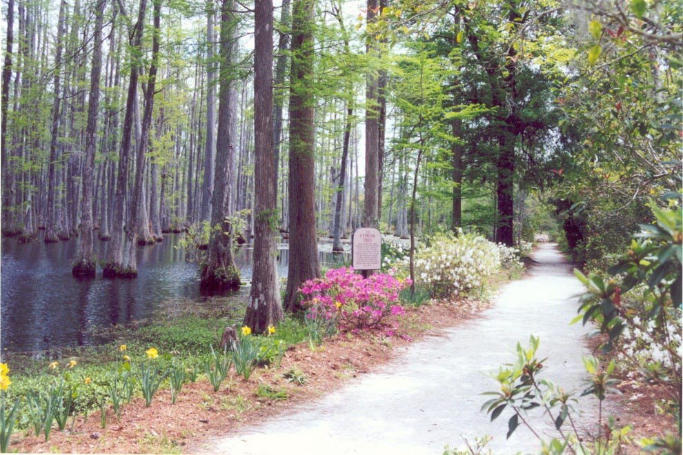 Cypress Gardens Charleston Attractions Review 10best Experts And Tourist Reviews