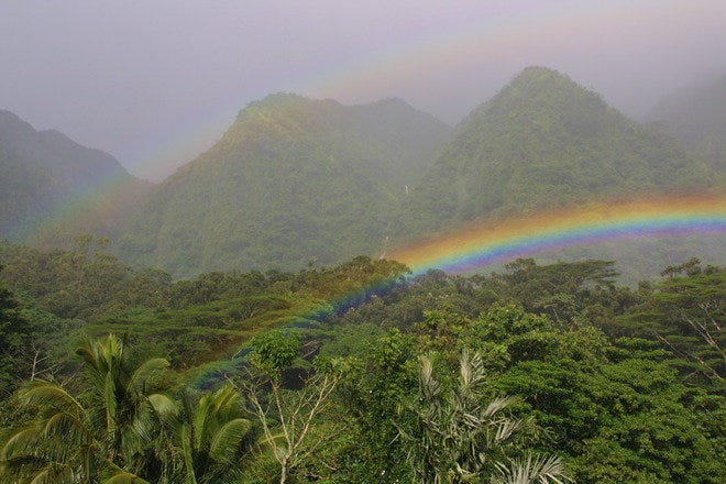 A double rainbow arcs across the lush Hawaiian tropical rainforest at Harold L. Lyon Arboretum on the island of O'ahu.