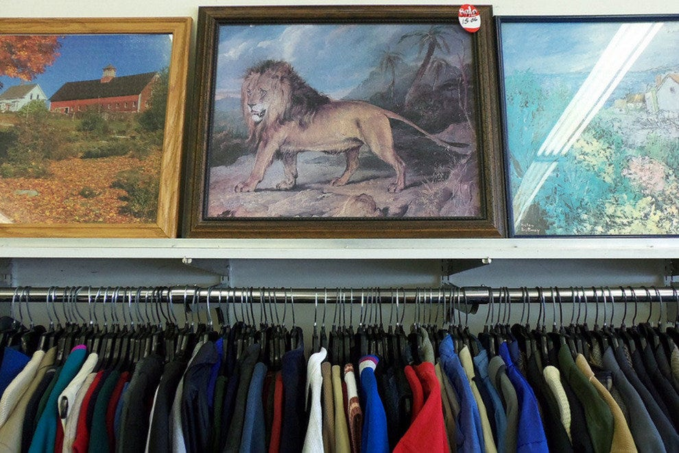Goodwill Store: Fun and Practical Items Alike