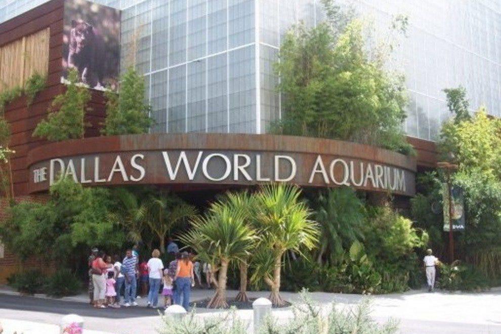 10best Itinerary Enjoy A Kid Friendly Day In Dallas