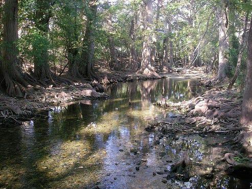 Cibolo Nature Center  City Park Rd Boerne Tx