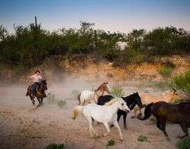 Dude Ranch Vacations in Arizona, Colorado, and New Mexico