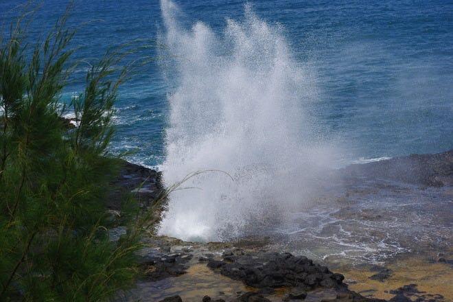 Best Attractions & Activities in Kauai