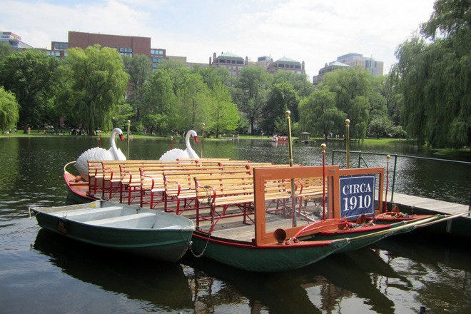 The swan boats at the Boston Public Garden are a popular attraction.
