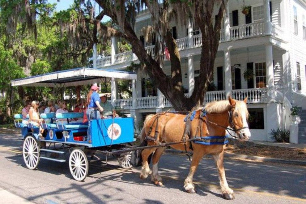 Southurn Rose Buggy Tours offers 50-minute narrated tours of the Beaufort Historic District.