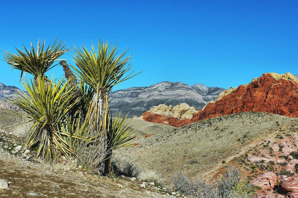 红岩峡谷国家保护区