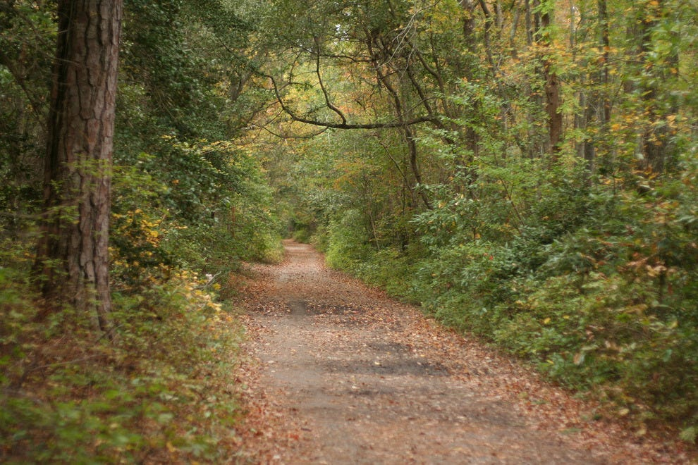 There are over 19 miles of bike trails in First Landing State Park