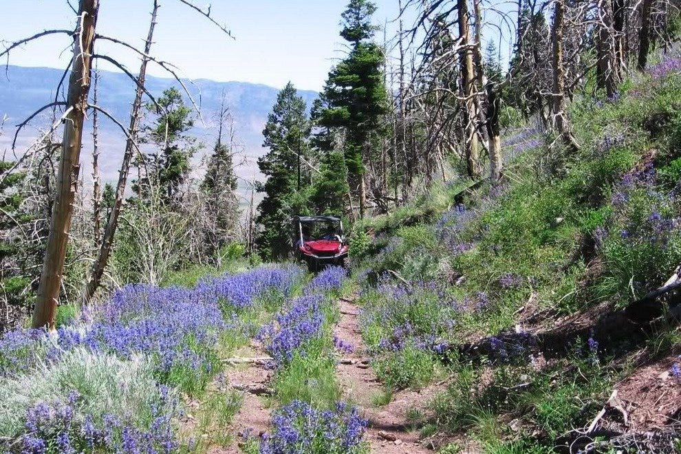 Cruise the ATV Trail Near Bryce Canyon