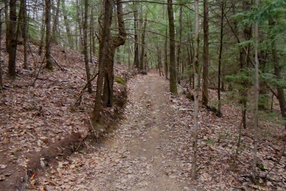 山。Agamenticus山地自行车