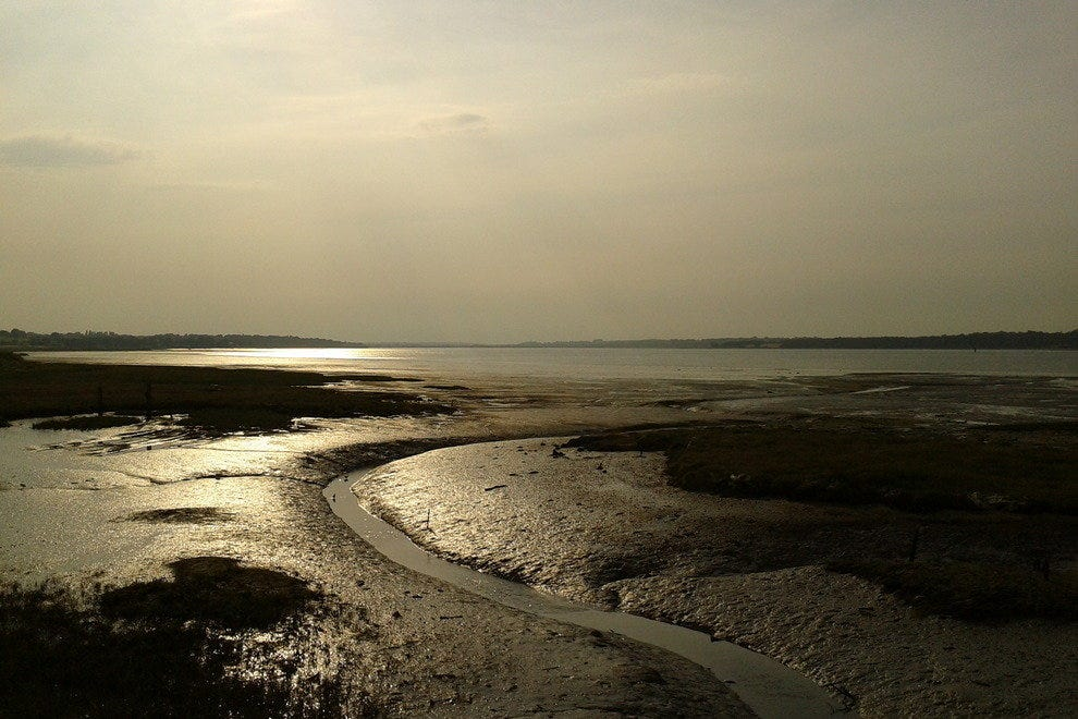 Mud Flats on the River Stour