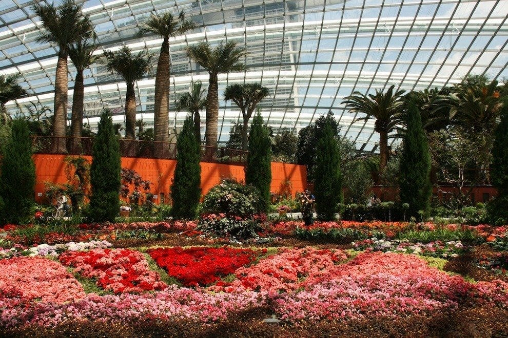 The Flower Dome is home to a changing collection of flowering plants