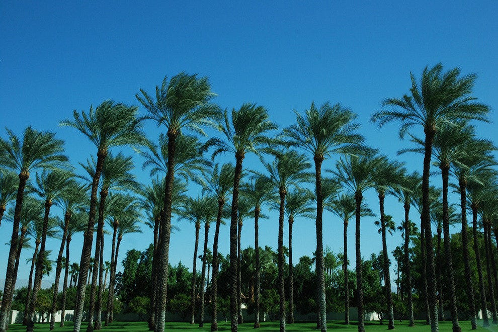 Palm Springs offers mountains, desert, shopping, and golf