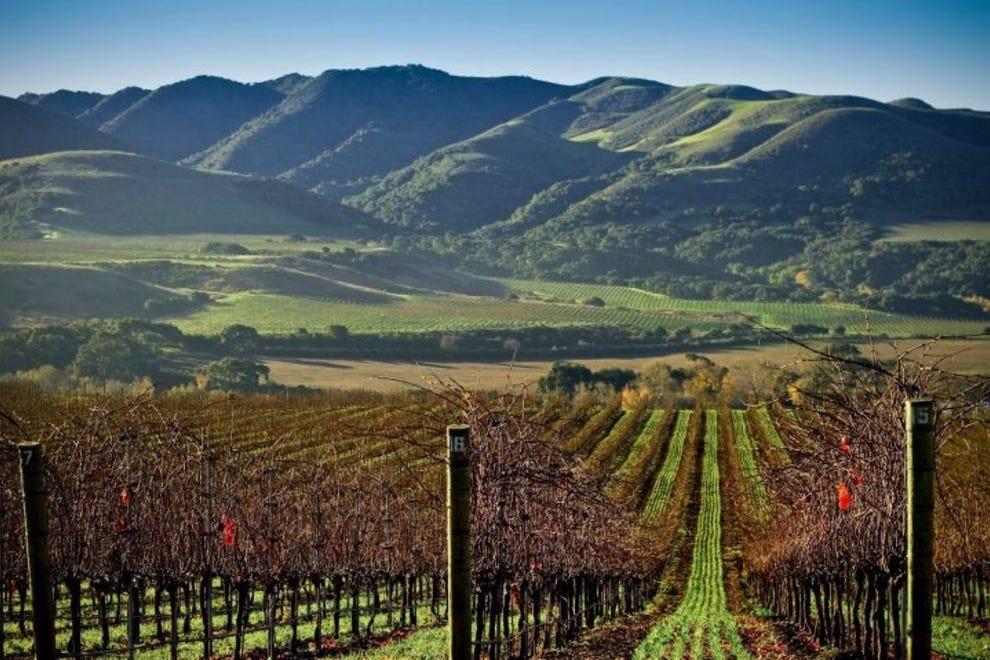 santa barbara home vineyard
