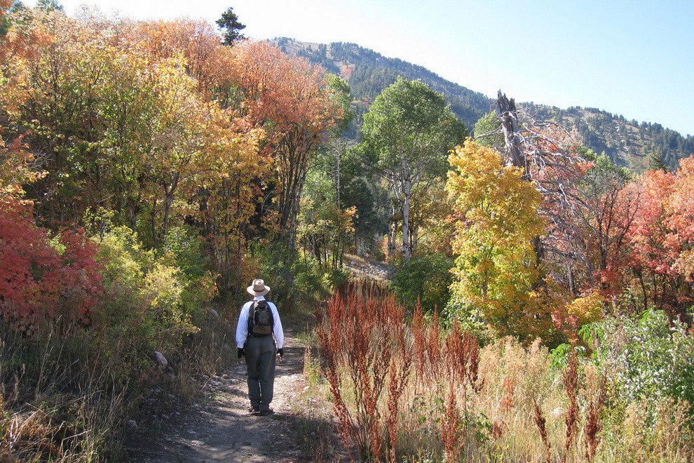 Hiking through Ogden Valley's autumn foliage