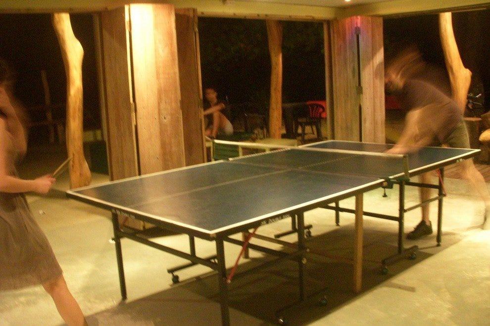 在懒惰的周一打乒乓球