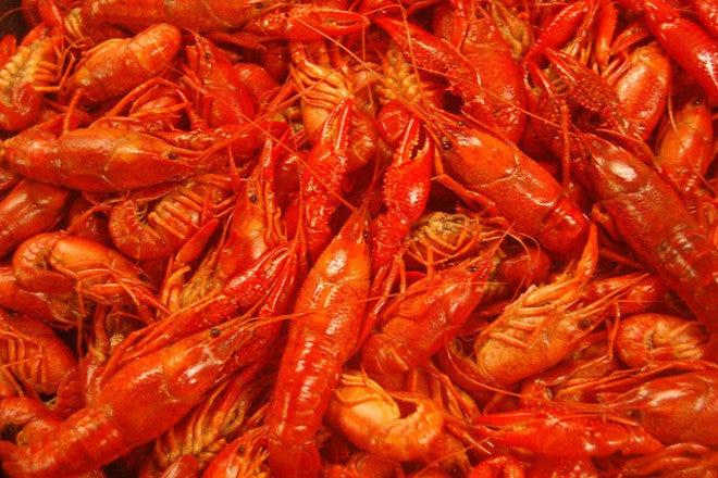 Hot N Juicy Crawfish: Las Vegas Restaurants Review - 10Best