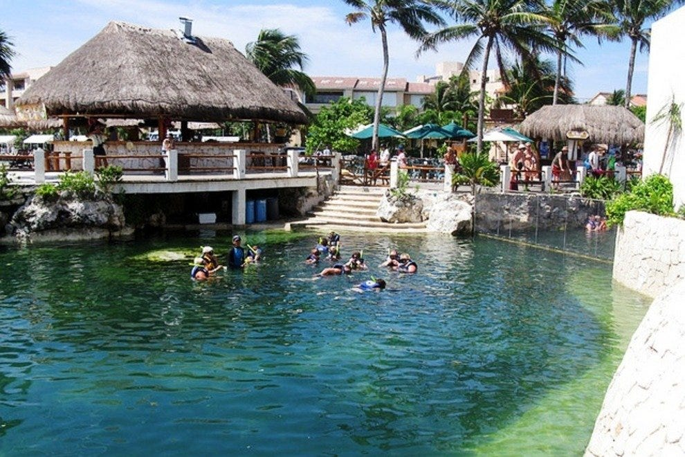 Dolphin Discovery Puerto Aventuras Canc 250 N Attractions