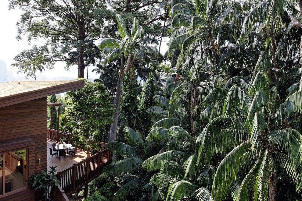 The Tree Top Lofts are tucked away in a private corner of tropical jungle