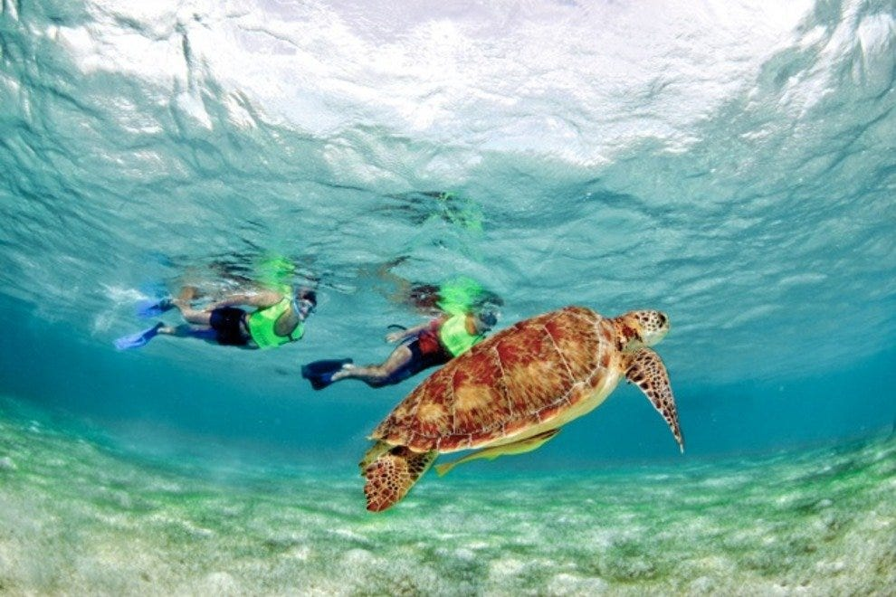 Cancun Guided Tours And Cruises 10best Reviews