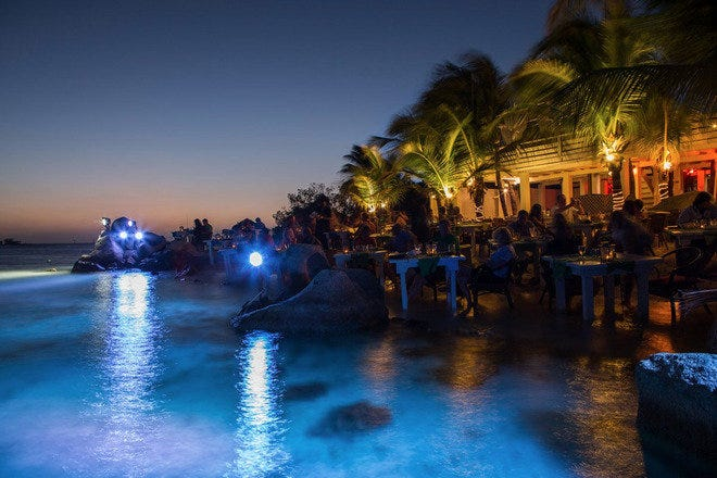 Flying Fishbone Aruba Restaurants Review 10best Experts