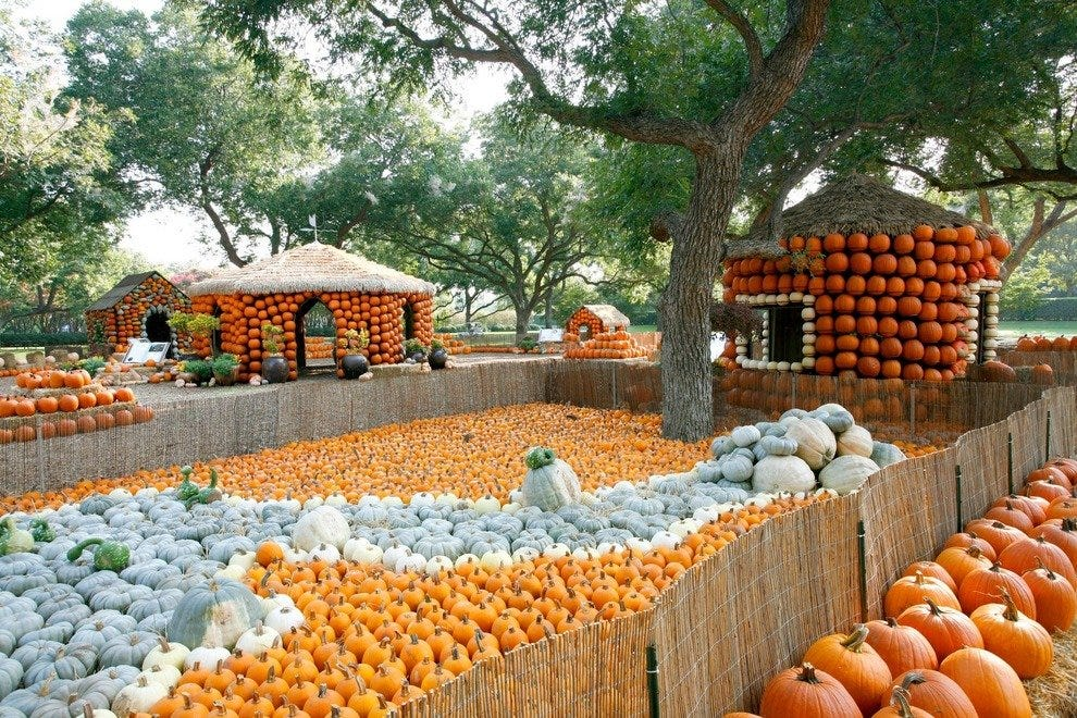 Pumpkin Village at the Dallas Arboretum and Botanical Garden.