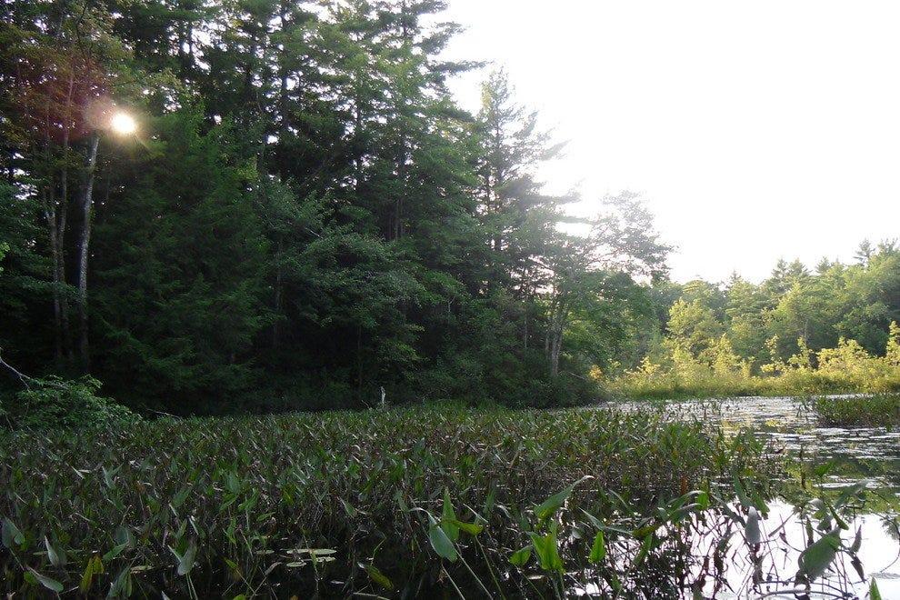 Bauneg Beg Pond