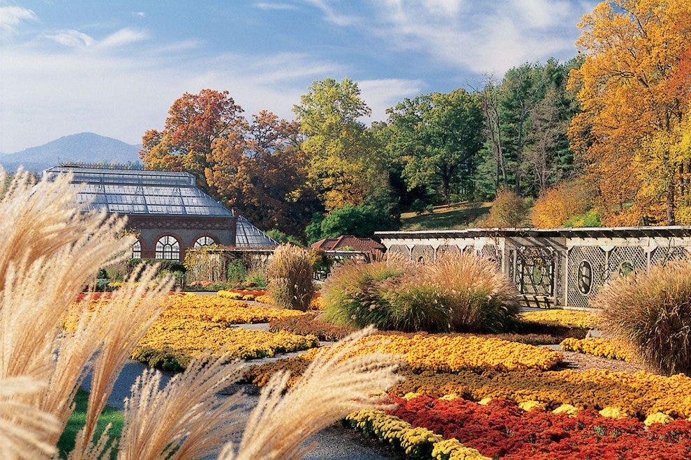 October brings fall colors to the Biltmore gardens.