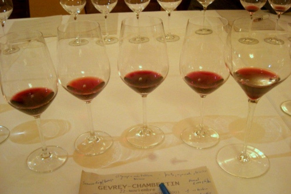 A flight of red wines lined up for a Burgundy tasting.