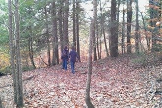Conservation Project Opens Up Mt. Agamenticus Views