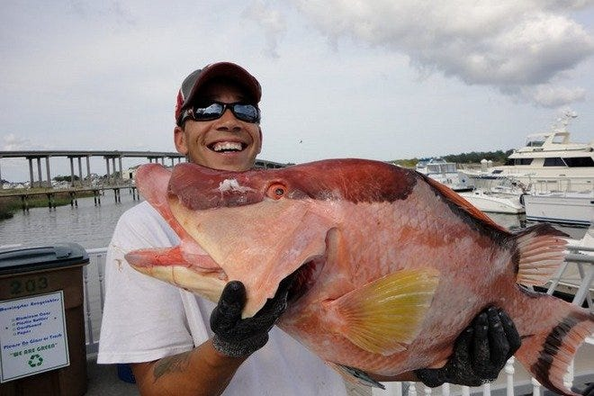 Reel 'Em In Deep Sea Fishing Charters