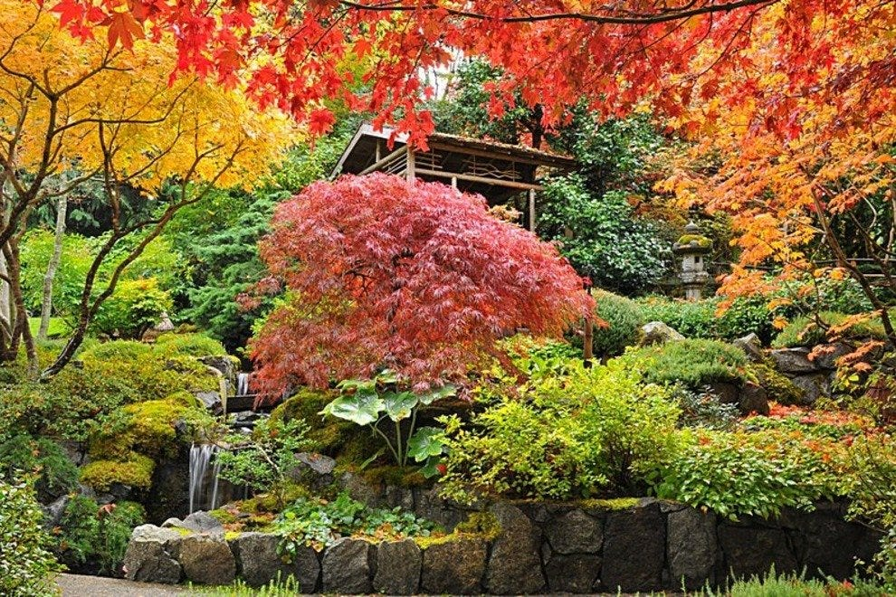 Fall colors at Butchart Gardens
