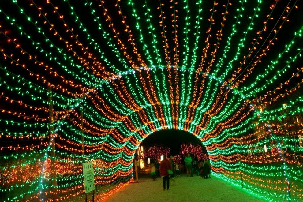 Light tunnel at WildLights at The Living Desert