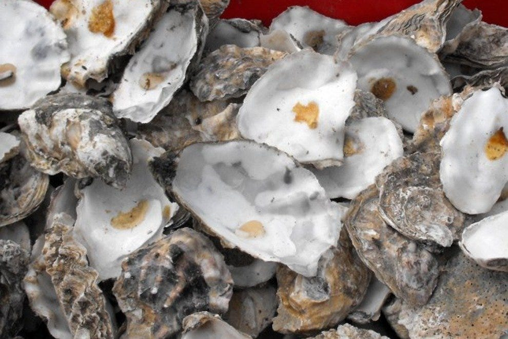 Don't be surprised if this is what's left on your plate after tucking into fresh oysters