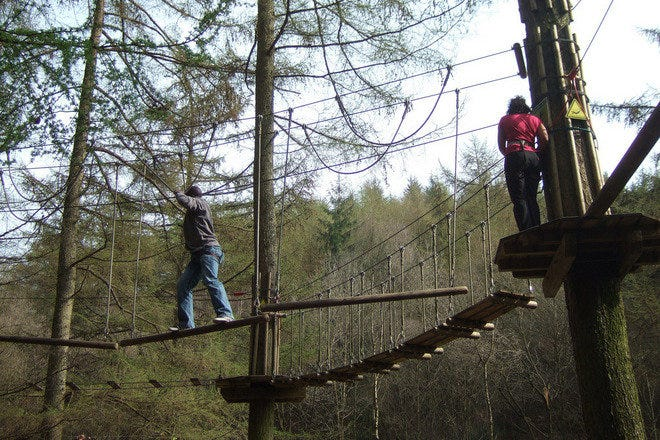 Go Ape Treetop Adventure Course Is One Of The Very Best Things To Do In Williamsburg