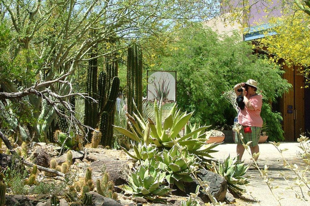 Arizona-Sonora沙漠博物馆