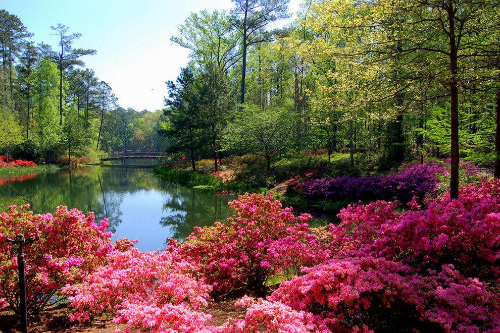 Callaway Gardens In Pine Mountain Georgia