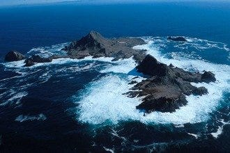 Visit the Edge:  San Francisco's Farallon Islands