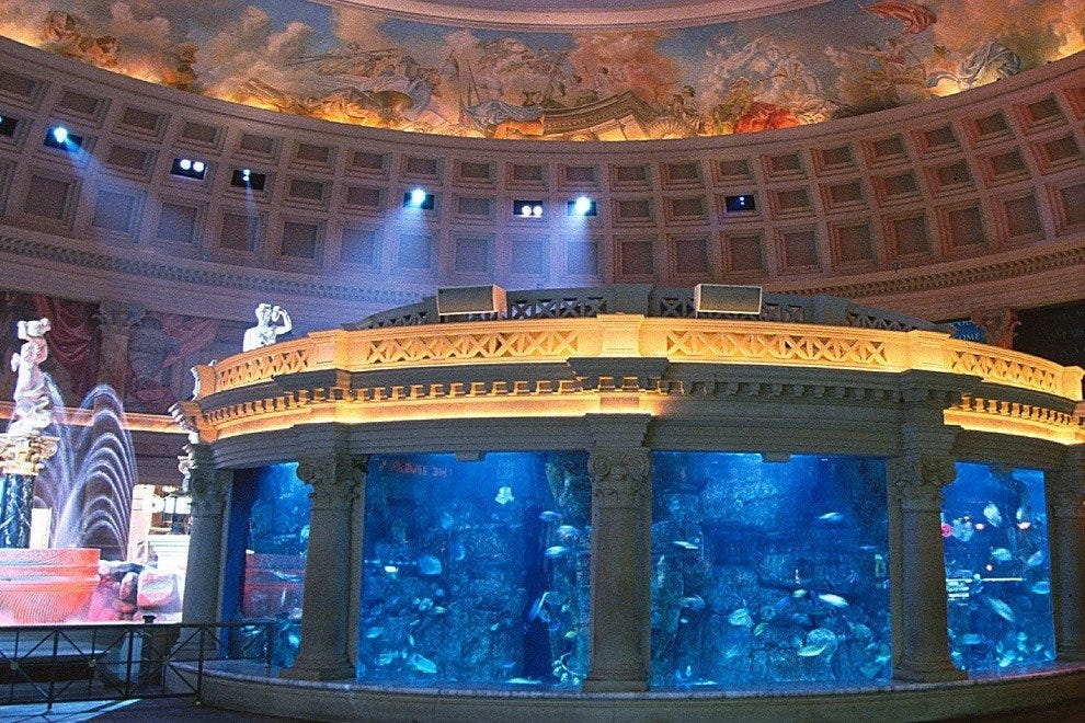 The Atlantis Aquarium