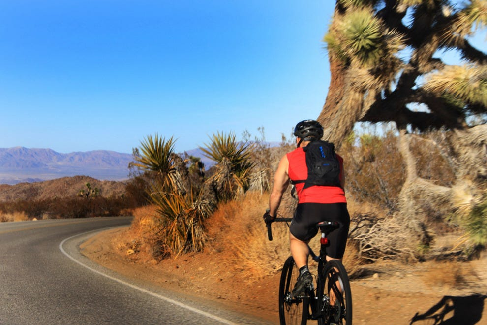 Mountain Biker, Joshua Tree National Park