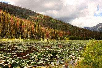 10Best Day Trip: Escape to Rocky Mountain National Park